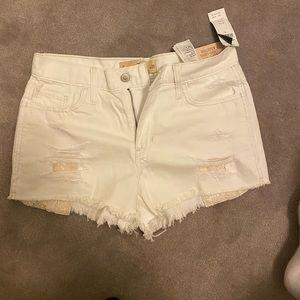 Hollister high waisted white shorts